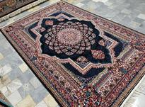 تنوع فرش کاشان مشهد  در شیپور-عکس کوچک