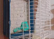 قفس خرگوش دست دوم  در شیپور-عکس کوچک