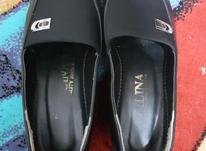 کفش زنانه درحدنو دوبارپوشیدم فقط در شیپور-عکس کوچک