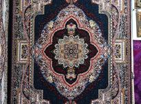 فرش های تخفیفی فروشگاه فرش نگیـــن   در شیپور-عکس کوچک