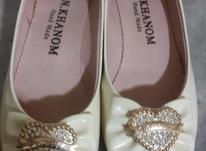 کفش زنانه اسپرت سایز 39  در شیپور-عکس کوچک