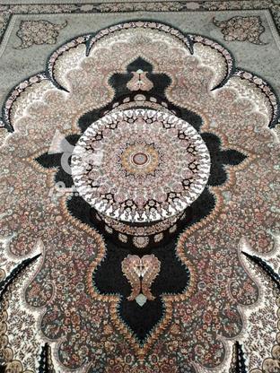 فروش یک عدد فرش 12متری 2500شانه  در گروه خرید و فروش لوازم خانگی در کرمان در شیپور-عکس1