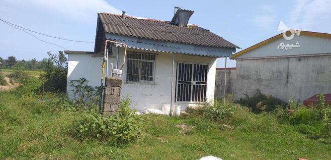 فروش خانه و کلنگی 220 متر در رضوانشهر در گروه خرید و فروش املاک در گیلان در شیپور-عکس2