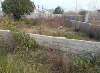 فروش زمین مسکونی 356 متر در چاف و چمخاله در شیپور-عکس کوچک