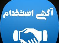 استخدام مشاور دربزرگ ترین املاک تهران در شیپور-عکس کوچک