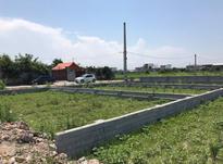 زمینهای شهرکی 250 متر  در شیپور-عکس کوچک