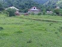 زمین وبرکه پای کوه باچشمه شخصی دوردیوار در شیپور