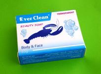 صابون خرچنگ (ضد جوش) اورکلین  EVER CLEAN در شیپور-عکس کوچک