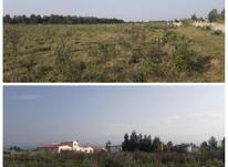 زمین مسکونی 200 متر در نور در شیپور-عکس کوچک