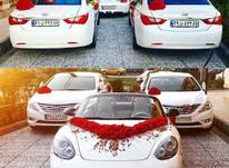 اجاره ماشین عروس با راننده در شیپور-عکس کوچک