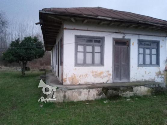 فروش خانه و کلنگی 3000 متر در رضوانشهر در گروه خرید و فروش املاک در گیلان در شیپور-عکس3