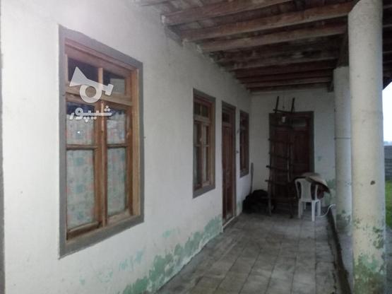 فروش خانه و کلنگی 3000 متر در رضوانشهر در گروه خرید و فروش املاک در گیلان در شیپور-عکس4