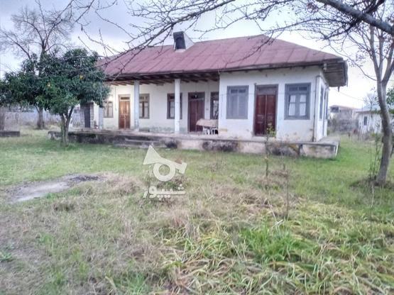 فروش خانه و کلنگی 3000 متر در رضوانشهر در گروه خرید و فروش املاک در گیلان در شیپور-عکس5