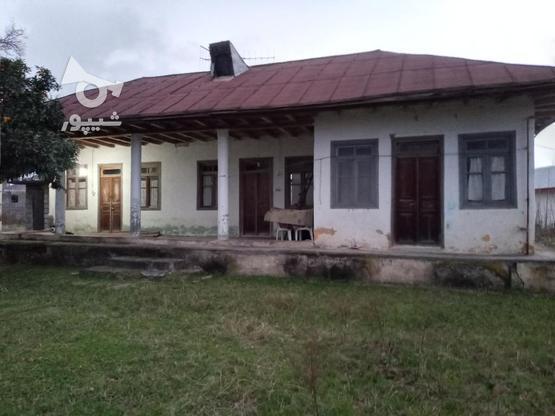 فروش خانه و کلنگی 3000 متر در رضوانشهر در گروه خرید و فروش املاک در گیلان در شیپور-عکس1