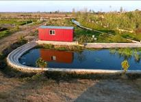 زمین شهرکی 180متری شهرکی /مسکونی بااقساط در شیپور-عکس کوچک