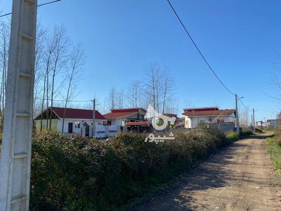 زمین محصور شده با جواز  309 متر در گروه خرید و فروش املاک در گیلان در شیپور-عکس1