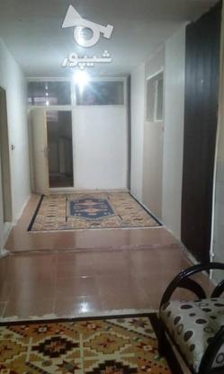 اجاره کوتاه مدت اپارتمان مبله لوکس در کرمان جهاد در گروه خرید و فروش املاک در کرمان در شیپور-عکس1