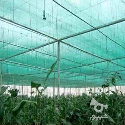 توری سایبان گلخانه در گروه خرید و فروش صنعتی، اداری و تجاری در تهران در شیپور-عکس1