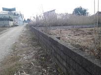 زمین مسکونی 1000 متر در کلارآباد در شیپور-عکس کوچک