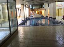 فروش آپارتمان ۲۶۰ متر در زعفرانیه در شیپور-عکس کوچک