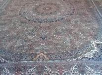 فرش 700 شانه نگین مشهد در شیپور-عکس کوچک