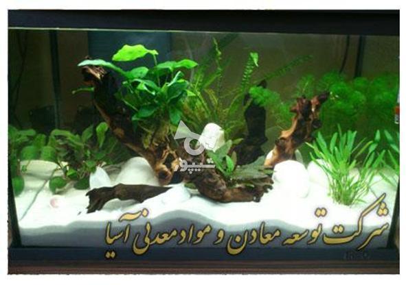 فروش انواع دانه بندی سیلیس آکواریوم سند بلاست سنگ مصنوعی در گروه خرید و فروش خدمات و کسب و کار در تهران در شیپور-عکس1