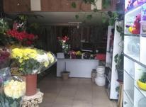 فروش تجاری و مغازه 37 متر در اندیشه در شیپور-عکس کوچک