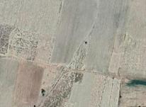 فروش زمین کشاورزی مسکونی کرمان در شیپور-عکس کوچک