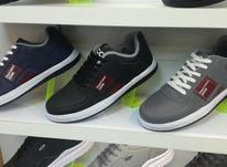 کفش مردانه eco  در شیپور-عکس کوچک