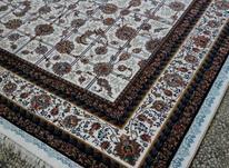 فرش نگین ساری در شیپور-عکس کوچک