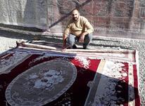 قالیشویی مجاز واحد رحمانی در شیپور-عکس کوچک