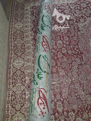 دو عدد قالی شش متری  در گروه خرید و فروش لوازم خانگی در خوزستان در شیپور-عکس1