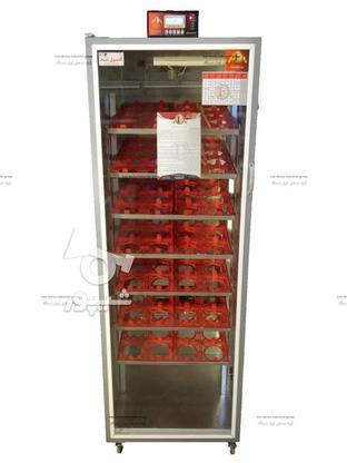 دستگاه جوجه کشی 112 تایی شترمرغ  در گروه خرید و فروش صنعتی، اداری و تجاری در تهران در شیپور-عکس1