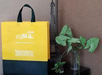 کیف دستی تبلیغاتی در شیپور-عکس کوچک