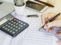 کارشناس حسابداری در شیپور-عکس کوچک