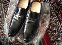 کفش مردانه شبرو سایز 44  در شیپور-عکس کوچک