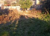 157متر زمین داخل بافت در شیپور-عکس کوچک