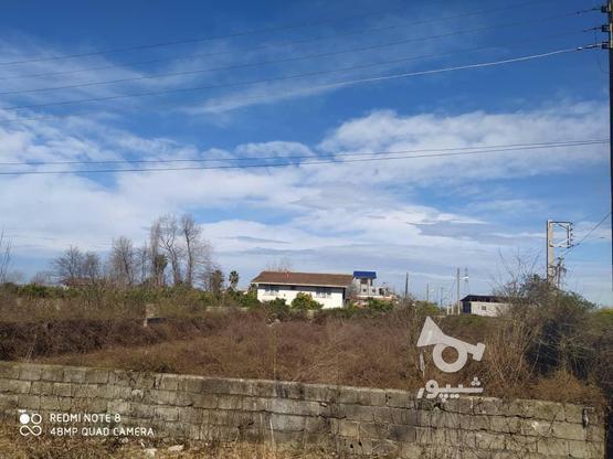 زمین مسکونی ۸۴۰ متر در رامسر در گروه خرید و فروش املاک در مازندران در شیپور-عکس1
