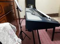 خواننده و نوازنده کیبورد  در شیپور-عکس کوچک