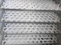 دستگاه جوجه کشی اتوماتیک  در شیپور-عکس کوچک