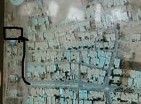 زمین فروشی 20قصب در شیپور-عکس کوچک