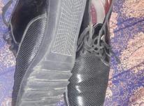 کفش مردانه درحدنو42/43 در شیپور-عکس کوچک