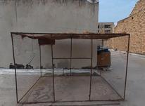قفس پرنده،مرغ در شیپور-عکس کوچک
