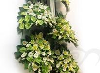 تاج گل ترحیم و افتتاحیه در شیپور-عکس کوچک