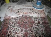 قالیشویی و مبل شویی مهدی در شیپور-عکس کوچک