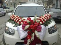 ماشین عروس سانتافه در شیپور-عکس کوچک