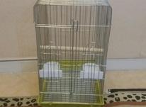 قفس آکبند مینا عروس هلندی طوطی مرغ عشق در شیپور-عکس کوچک