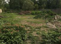 فروش زمین بر مرداب در بندرانزلی در شیپور-عکس کوچک