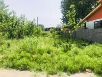 فروش 300 زمین داخل بافت مسکونی در شیپور