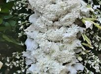 تاج گل مراسم در شیپور-عکس کوچک